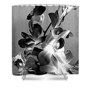 Orchids 2 Bw Shower Curtain
