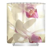 Orchid's Glow Shower Curtain