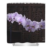 Orchids Loretta Shower Curtain