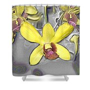 Orchids With Oil Slick Pattern Shower Curtain