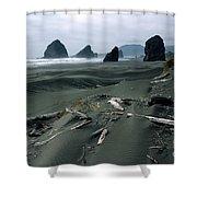 Oregon Coast 2 Shower Curtain