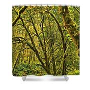 Oregon Rainforest Shower Curtain