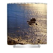 Oregon State Pacific Coast Shower Curtain