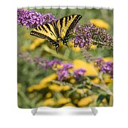 Oregon Swallowtail In The Garden  Shower Curtain