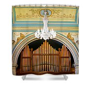 Organ And Ceiling Shower Curtain