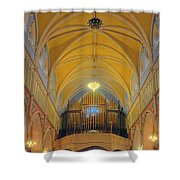 Organ At St. Bridgets Cathedral Shower Curtain