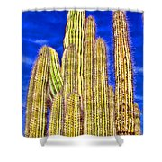Organ Pipe Cactus Arizona By Diana Sainz Shower Curtain