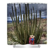 Organ Pipe Cactus The Visitor 1 Shower Curtain