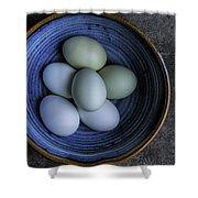 Organic Blue Eggs Shower Curtain