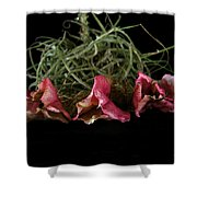 Organic Still Life 1 Shower Curtain