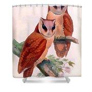 Oriental Bay Owl Shower Curtain