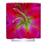 Oriental Lily Stamen Shower Curtain