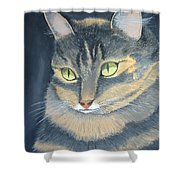 Original Cat Painting Shower Curtain