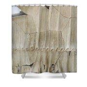 Original Goddess Shower Curtain