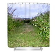 Orkney Night Shower Curtain