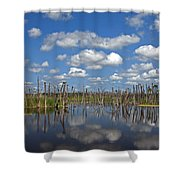 Orlando Wetlands Cloudscape 3 Shower Curtain