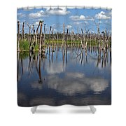 Orlando Wetlands Cloudscape 5 Shower Curtain