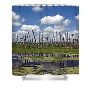 Orlando Wetlands Cloudscape Shower Curtain by Mike Reid