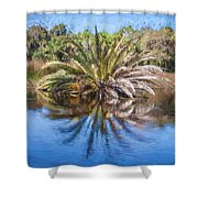 Ormond Scenic Loop Florida Palm Tree Painted  Shower Curtain