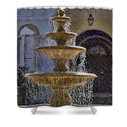 Ormond Water Fountain Shower Curtain