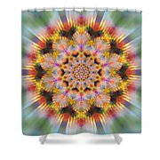 Ornament 3 Shower Curtain