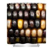 Ornamental Corn Shower Curtain