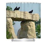 Ornamental Crows Shower Curtain