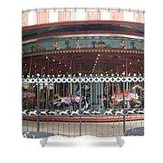 Ornamental Fence Shower Curtain