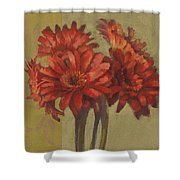 Ornamental Gerbers Shower Curtain