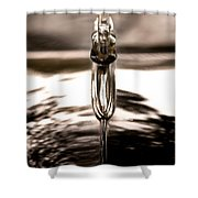 Ornamental Shower Curtain