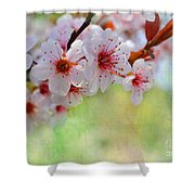 Ornamental Plum II Shower Curtain