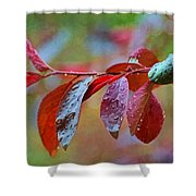 Ornamental Plum Tree Leaves With Raindrops - Digital Paint Shower Curtain