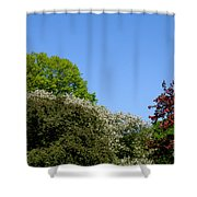 Ornamental Skyline Shower Curtain