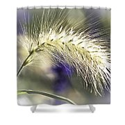 Ornamental Sweet Grass Shower Curtain