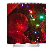 Ornaments-2107 Shower Curtain
