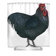 Orpington Rooster Shower Curtain