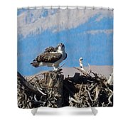 Osprey And Catch Shower Curtain