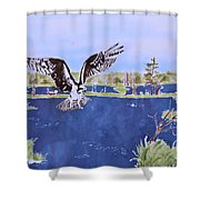 Osprey At Tuttle Marsh Shower Curtain