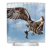 Osprey In The Clouds Shower Curtain