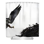 Osprey With Sushi Shower Curtain