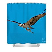 Dinner To Go Shower Curtain
