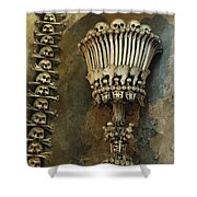 Ossuary Chalice Shower Curtain