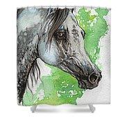 Ostragon Polish Arabian Horse Painting 1 Shower Curtain