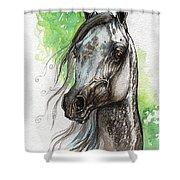 Ostragon Polish Arabian Horse Painting   Shower Curtain
