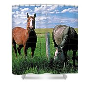 Other Side Of The Fence Shower Curtain