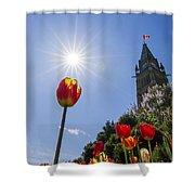 Ottawa Tulip Festival Shower Curtain