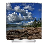 Otter Point Afternoon Shower Curtain