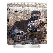 Otter Posing Shower Curtain