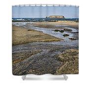 Otter Rock Shower Curtain