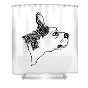 Otto Shower Curtain